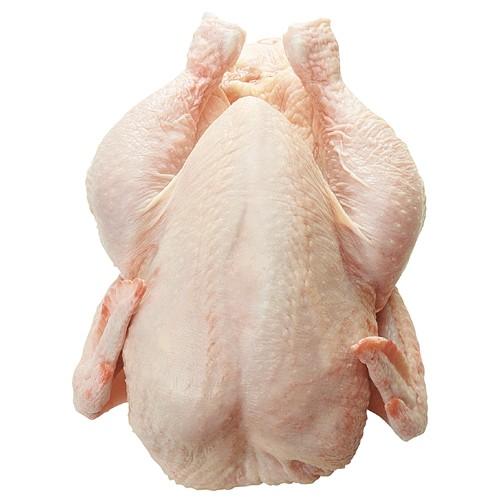 Buy Frozen Chicken