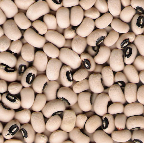 Buy Black Eye Beans