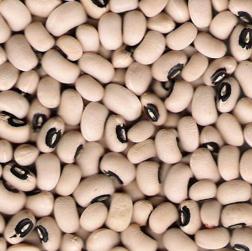 Buy Black Eye Beans