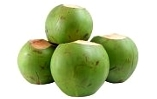 Buy Young coconut