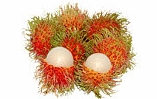 Buy Rambutan