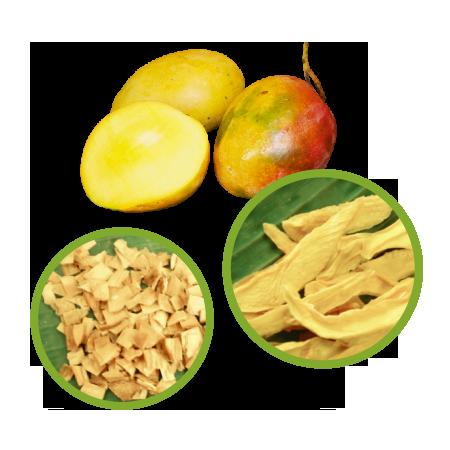 Buy Mango Dried