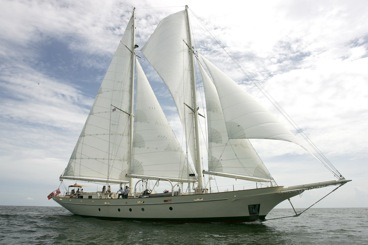 Buy Sail Boat