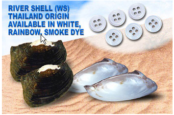 Buy River Shell (Ws)