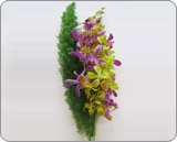 Buy Orchid Bouquets