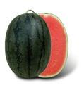 Buy Watermelon