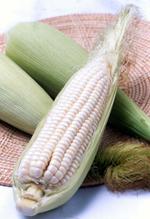 Buy Hybrid Glutinous Corn Big white