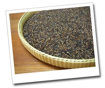 Buy Purple Rice