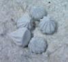 Buy Thai White Clay / Mud