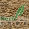 Buy Astragalus Powder Extract Astragaloside 0.3% 1% 3% GMP Factory