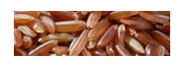 Buy Thai Red Cargo Jasmine Rice