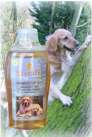 Buy Animal Shampoo for Pets