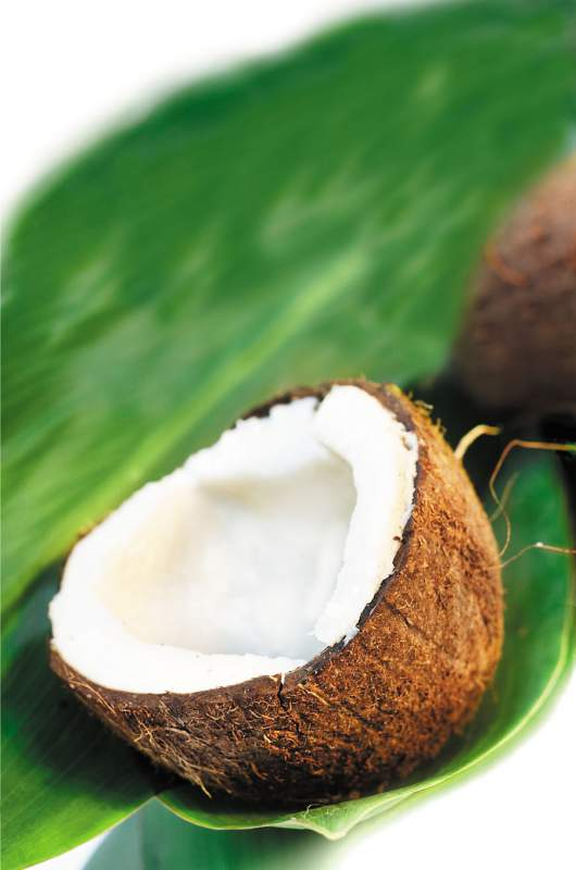 Buy Coconut Juice