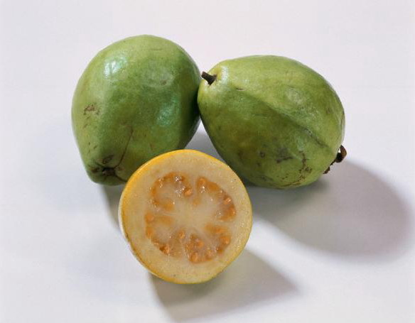 Buy Fresh Guava Thai