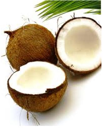 Buy Shampoo Coconut
