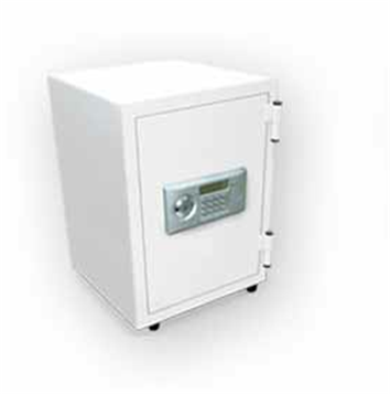 Buy DV-50E Fire Safe Vertical Systems Digital