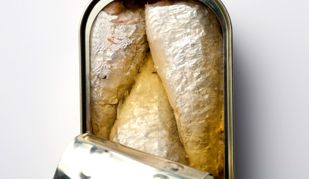 Buy Sardine Preserved