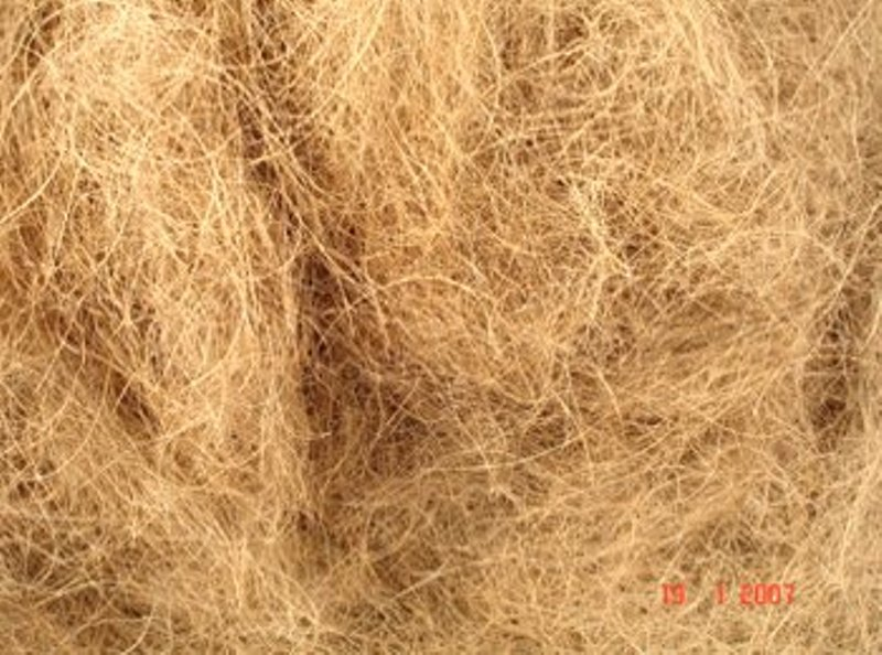 Buy Coconut Fiber Thai