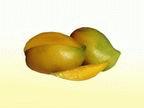 Buy Sweet mangos