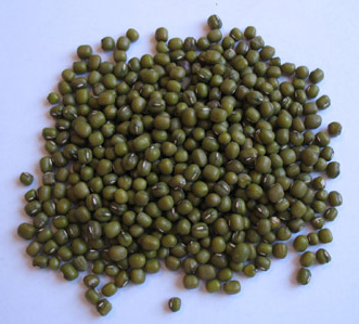 Buy Mung Bean