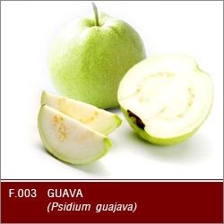 Buy Fresh Guava