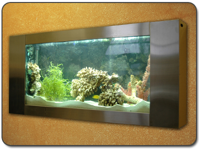 Wall Mounted Aquariums; more