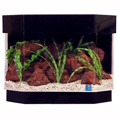 Buy Deluxe Acrylic Aquariums