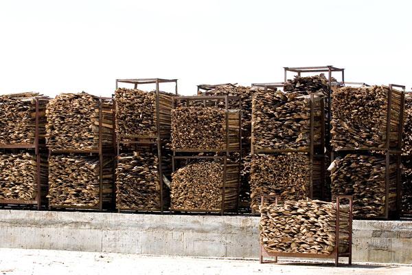 Buy Waste Wood
