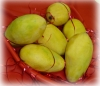 Buy Fresh Mango