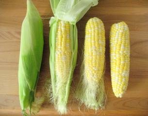 Buy Frozen Cooked Peeled Corn