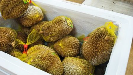 Buy Frozen Durian Thai
