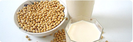 Buy Isolated Soy Protein (ISP)