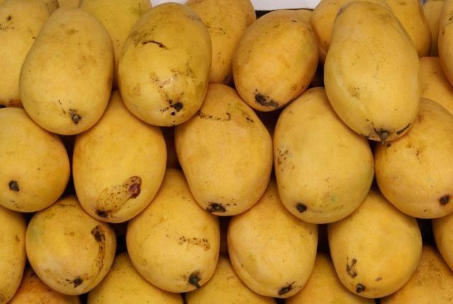 Buy Sub-Tropical Fruit mango