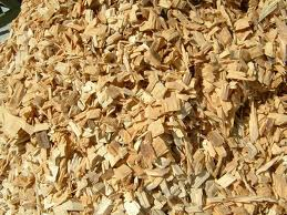 Buy Eucalyptus Wood chip