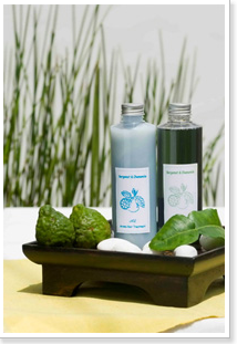 Buy Aroma Shampoo and Olive Aroma Treatment 250 ml