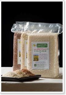 Buy Organic Rice