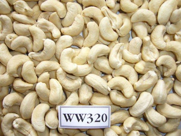 Buy Cashew nut kernel
