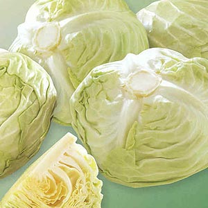 Buy White Cabbage