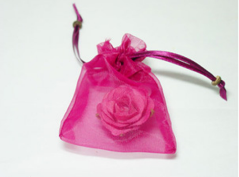 Buy Organza Bag