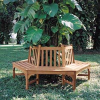 Buy Treebench with backret