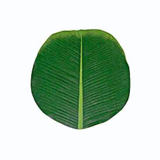 Buy Artificial Banana Leaf