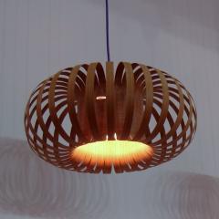 Donut Pendent Lamp