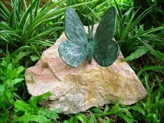 Bronze butterfly