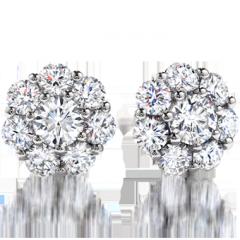 Beloved Earrings