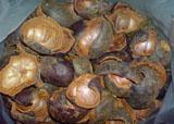 Dried Mangosteen Shell