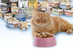 Canned Catfood for Cats
