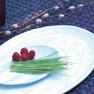 Free Form Shape Dinner Plate