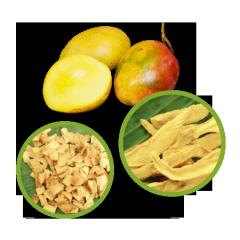 Mango Dried