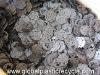 Polyphenylene Sulfide (PPS)