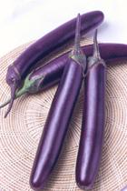 Hybrid Long Eggplant Casino